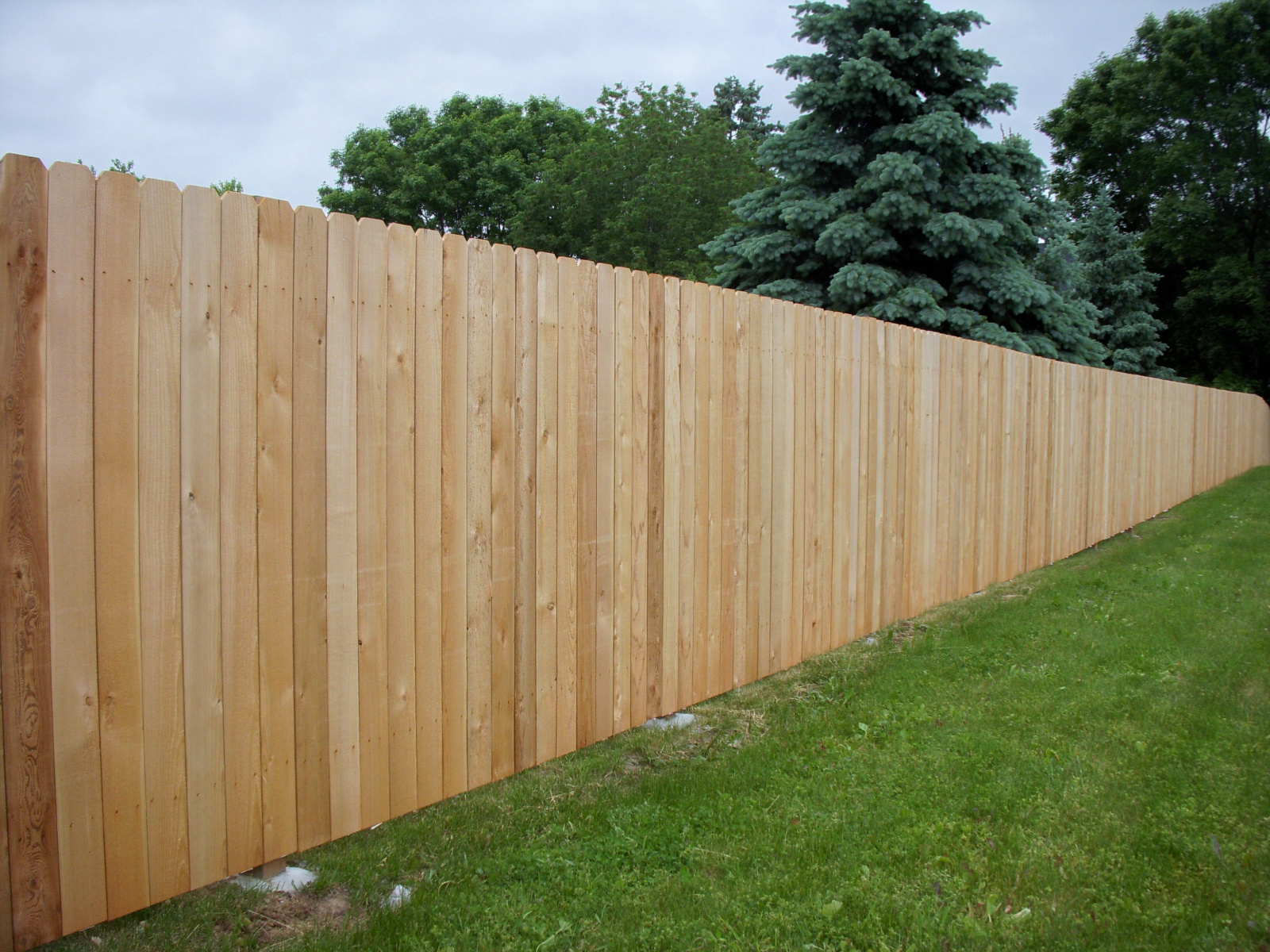Cedar Privacy Fences Twin Cities Fence Company Dan S Fence